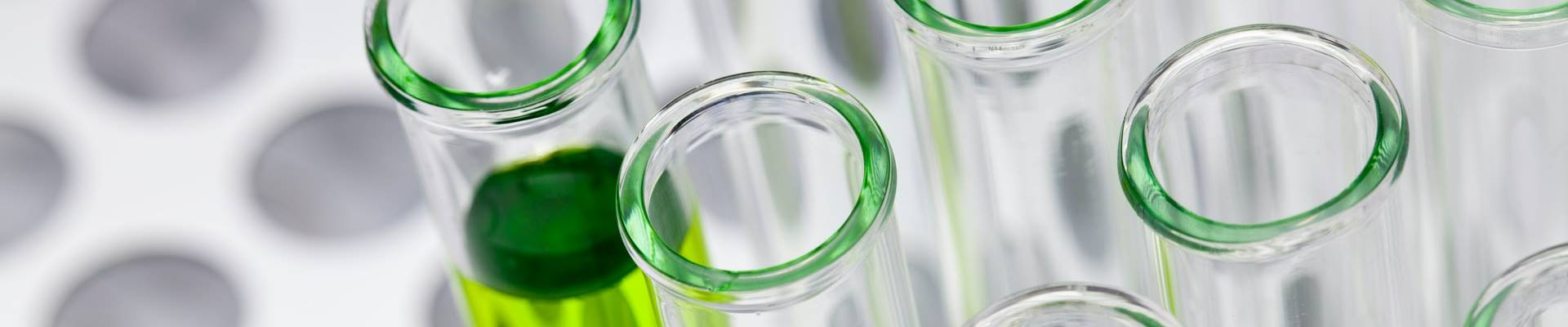 Petri dishes with green fluid inside